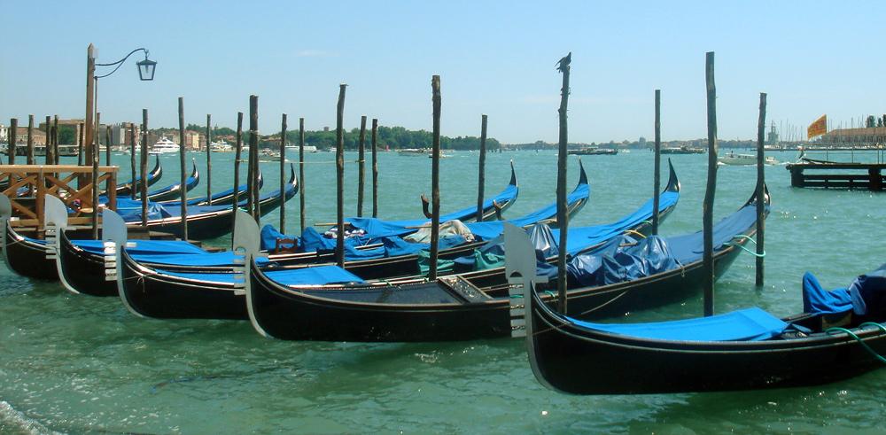 The gondola