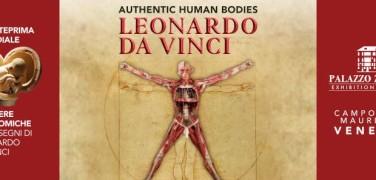 Authentic human bodies. 50 works by Leonardo da Vinci